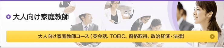 大人向け家庭教師 コース(英会話、TOEIC、資格取得、政治経済・法律)